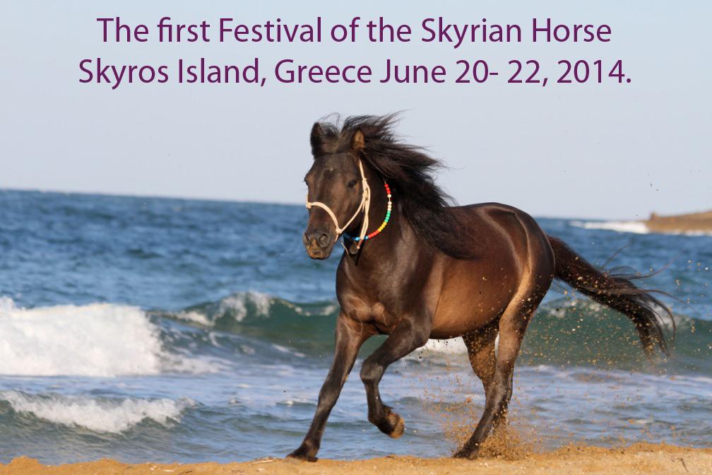 η πρώτη Γιορτή για το Σκυριανό άλογο, Σκύρος 20-22 Ιουνίου 2014