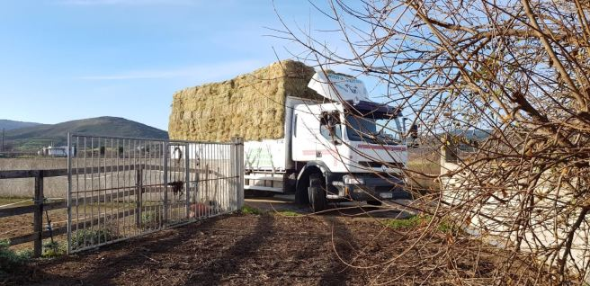 December hay delivery