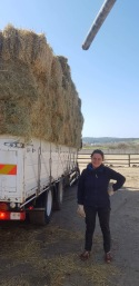 Early March hay delivery with regular volunteer Anna