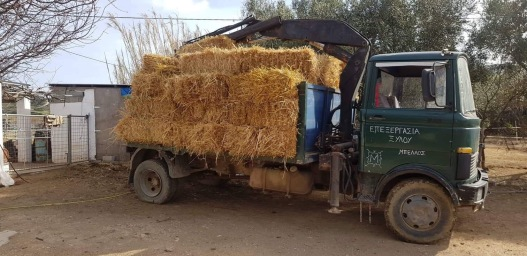 One of the many smaller deliveries brought in on a 3-wheeler. The main road from Skyros port collapsed due to awful weather during the winter, preventing the larger lorry from accessing the farm. Very lucky to have friends who help us out in desperate circumstances!