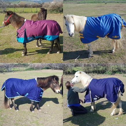 Astrapi and Meli modelling their new wardrobe!